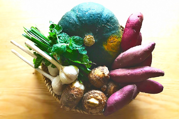 南阿蘇野菜